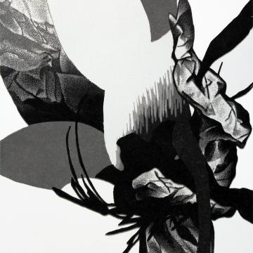 Greyflower 4